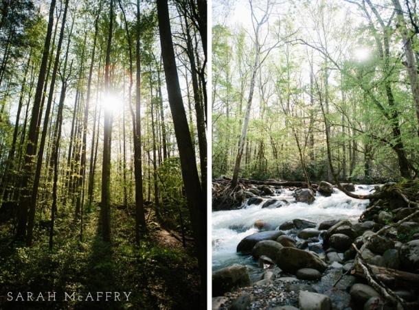 smoky.mountains.photographer_0550